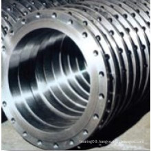Detailed Technical Information for Rotek Slewing Bearing (L9-49N9Z)