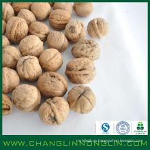 Nuevos productos con secado natural y puro Nueces de Chile