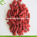 Factory Supply Fruit Dried Cosmetic Diet Goji Berries