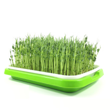 Flat PP Seed Tray, plastic seed tray for plant wholesale