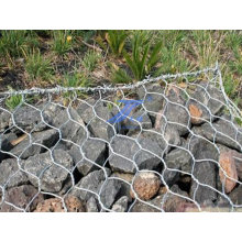 Protected Hexagonal Wire Mesh (factory)