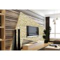 Glas Mosaik / Farbig / Schwimmbad / TV Wand / Glas Mosaik
