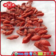 EU standard red dried wolfberry/goji berries for Anti-tumor