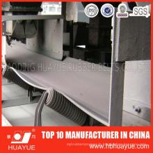 Fabricant de ceinture de transporteur de résistance d'acide et d'alcali