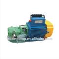 WCB Typ Edelstahl tragbare elektrische Öl Zahnradpumpe