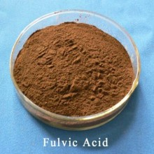 (CAS No.: 479-66-3) Biochemical Fulvic Acid 95%