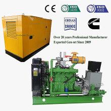 30kw Biogas Generator Set oder Genset für Vieh Gas Stroh und Husk Gas