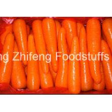 2016 vente chaude nouvelle récolte de carottes fraîches