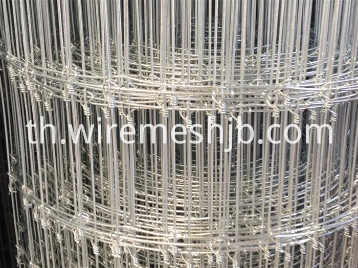Galvanized Woven Wire Fencing