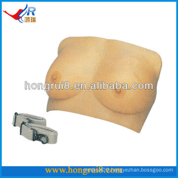 ISO Vivid Medical Nursing Teaching Model Breast examination