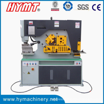 Q35y Series high precision combined Punching and Shearing Machine