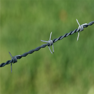 Anti oxidation barbed wire