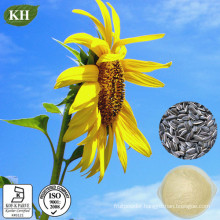 100% Natural Sunflower Seed Phosphatidylcholine
