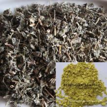 Proteína protectora del hígado Dihidromiricetina (DMY) 50%, 80%, 90%, 98% Extracto de té de vid