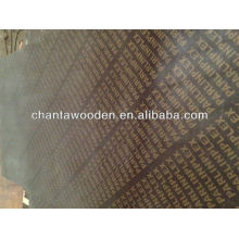 /waterproof construction marine plywood/shuttering plywood/film faced plywood