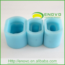 EN-G5 6Times Silicon Rubber Material Blue Single Permanent Diente Mold