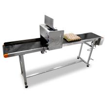 High speed egg inkjet printer/expiry date printing machine on Egg/egg making machine