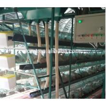 Hochwertige Käfige für Hühnerstall