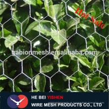 Produtos hexagonais de malha de fio de galinha de boa qualidade na China