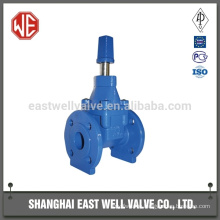 Gate valve wcb