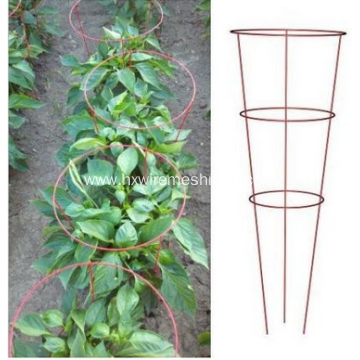 Tomato plant round support