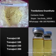Parabola Raw Steroid Powder Tren Ena Trenbolone Enanthate 472-61-546
