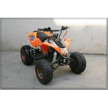 150CC ATV KINDER QUAD DUNE BUGGY MOTOR VON SHINERAY