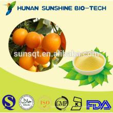 Pó de suco de Kumquat orgânico 100% puro