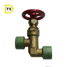 Hot Sale Fuel Demand Disel Hose Bronze  Type A External Thread Globe Valve