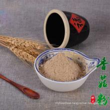 factory supply low price natural food grade vegan Organic Pea Powder