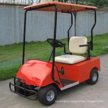 Buggy de Golf électrique monoplace de Chine usine batterie puissance (DG-C1)