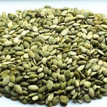 Chinese shine skin pumpkin seed kernels