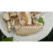 Boleto Seco / Porcini Edulis Cogumelos Fatias Grau a