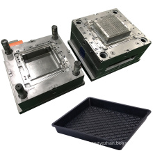 china design custom agriculture nursery tray mold precision plastic injection mould maker