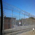 High Tensile Concertina Razor Barbed Wire for Border