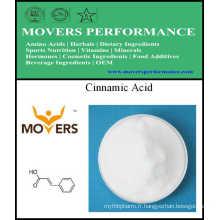 Acide cinnamique de haute qualité 99,5% 621-82-9