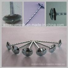 Bwg8 2.5 '' cabeça de guarda-chuva torcida da haste (ISO9001)
