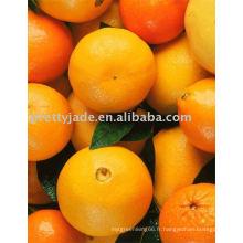 Fresh Orange De Valence