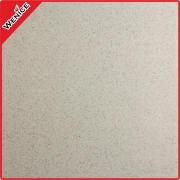 Berth tiles ,No skid tiles , ceramic floor tiles 12mm -----02
