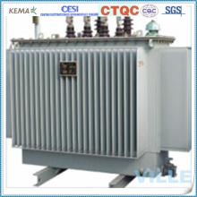 Transformador de potência totalmente fechado com três fases de óleo imerso