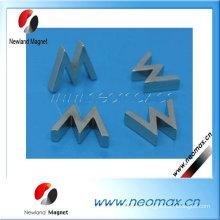 Rotor magnético permanente