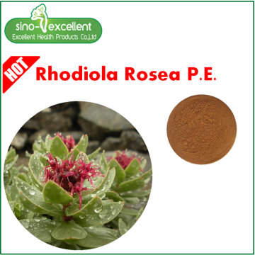 Rhodiola Rosea Extract powder