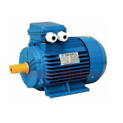 Best Choice High Torque Low RPM Electric Motor in Any Season
