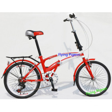 Specail City Alloy Folding Bike (FP-FDB-D009)