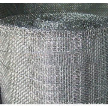Galvanized Square Wire Netting