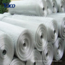 New products low price galvanized welded wire mesh from China