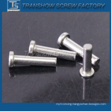 Stainless Steel Grade304 Flat Head Pins