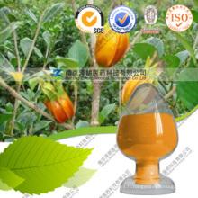 Wolesaler Liquid Food Coloring Gardenia Yellow FDA