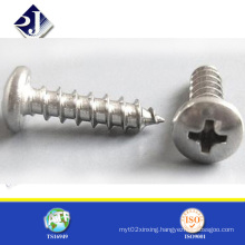 Zinc Plated Pan Head Sharp Point Self Tapping Screw (DIN7981)