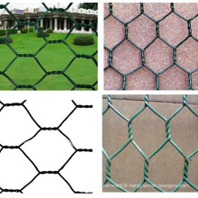 Chicken Wire for Fowl
